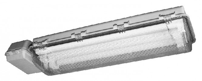 Awaryjna oprawa przeciwwybuchowa e841